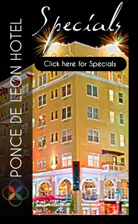 sp-petersburg-florida-hotel-special